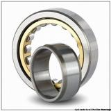 80 mm x 140 mm x 26 mm  SKF NU 216 ECML  Cylindrical Roller Bearings