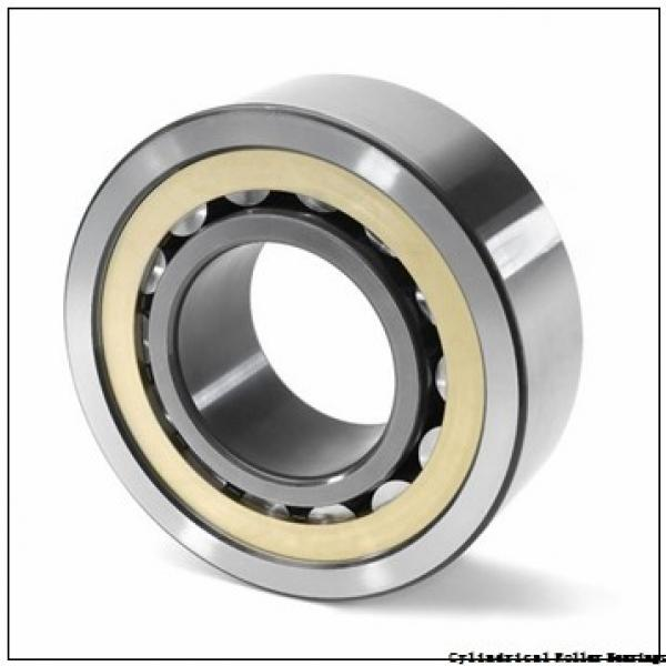 1.181 Inch   30 Millimeter x 2.441 Inch   62 Millimeter x 0.787 Inch   20 Millimeter  SKF NUP 2206 ECP/C3  Cylindrical Roller Bearings #3 image