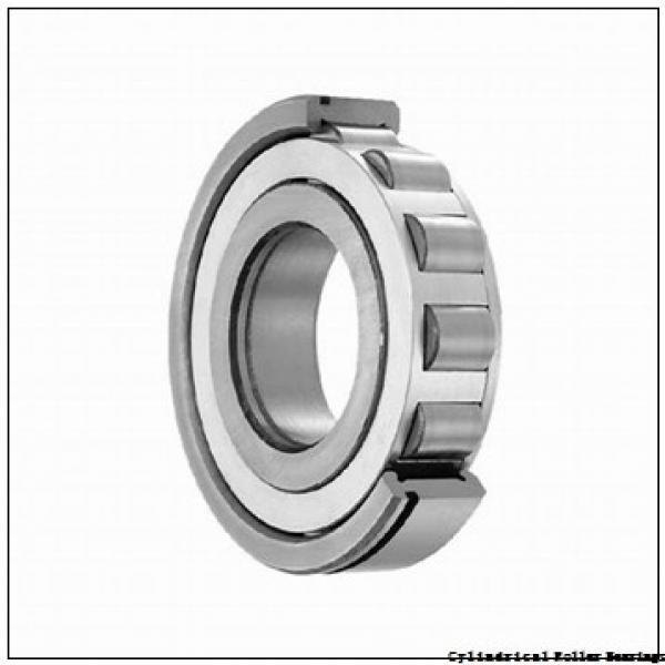 1.181 Inch   30 Millimeter x 2.441 Inch   62 Millimeter x 0.787 Inch   20 Millimeter  SKF NUP 2206 ECP/C3  Cylindrical Roller Bearings #1 image